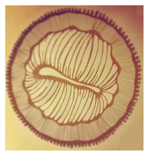 Original doodle (Instagram pic)