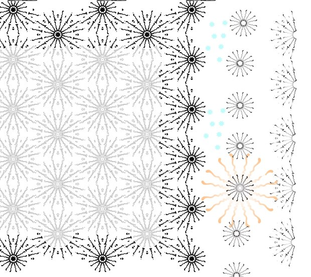 sunny bones experiments - shifting motifs around